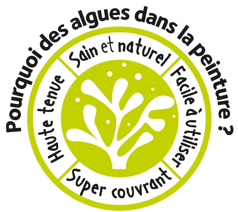 Algo Pro Une Peinture écologique Naturelle Bio Sourcée