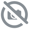 Peinture Façade Pliolite Thelexter 15l Peinture Ravalement De Protection Et Décoration De Vos Maçonneries Et Murs Extérieurs